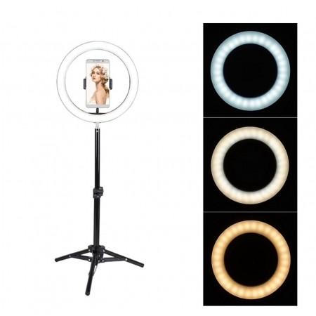 Кольцевая лампа RGB 30 см со штативом 210 см (№33) оптом