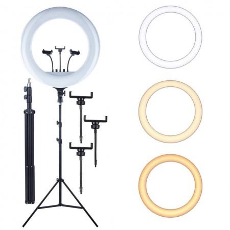 Кольцевая LED лампа 45 см со штативом 210 см (№30) оптом